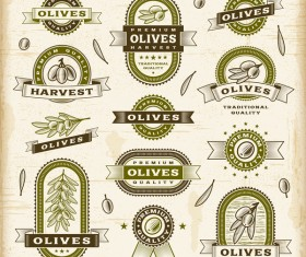 Vintage olive labels set vector