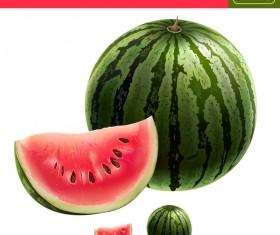Watermelon with slice realistic vectors