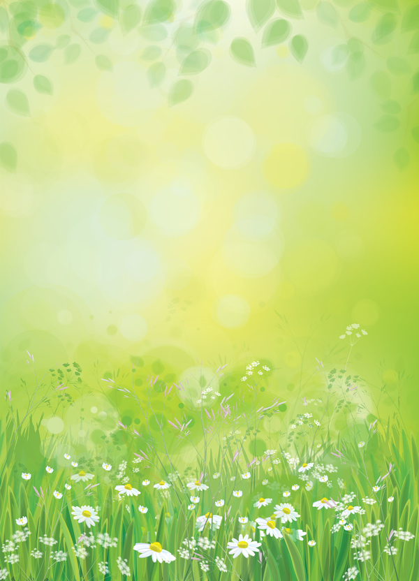 white daisies with spring backgrounds vector set 11 free