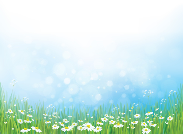 White Daisies With Spring Backgrounds Vector Set 15