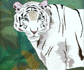 White tiger hand drawn vector
