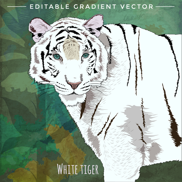 White tiger hand drawn vector