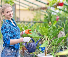 Woman watering the plants Stock Photo