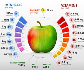 apple vitamins infographics vector
