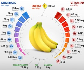 banana vitamins infographics vector
