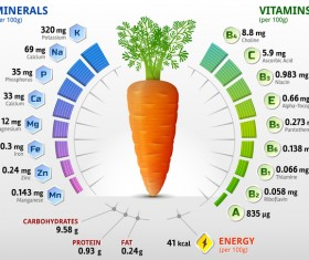 carrot vitamins infographics vector