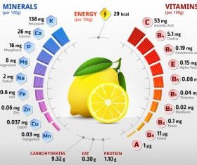 lemon vitamins infographics vector
