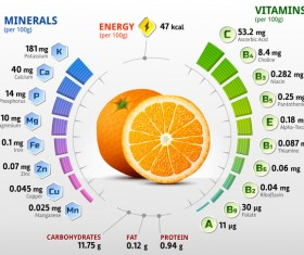 orange vitamins infographics vector