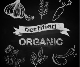 organic vegetables with chalkboard background vector