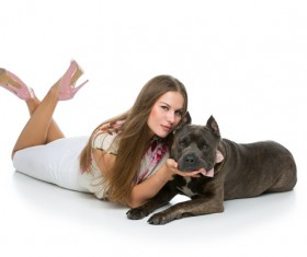 Beautiful girl with gray Stafford dog Stock Photo