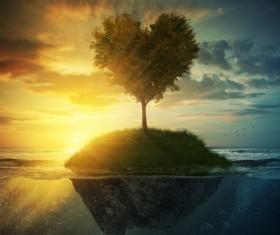 Beautiful scenery heart tree Stock Photo 02