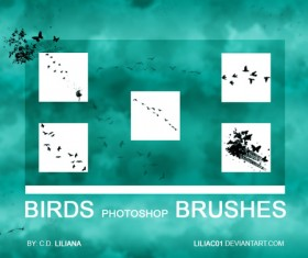 Birds PS brushes