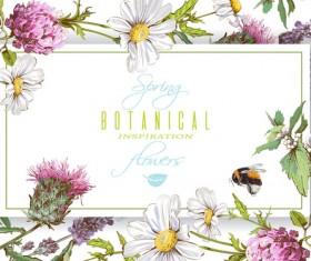 Botanical frame vector material
