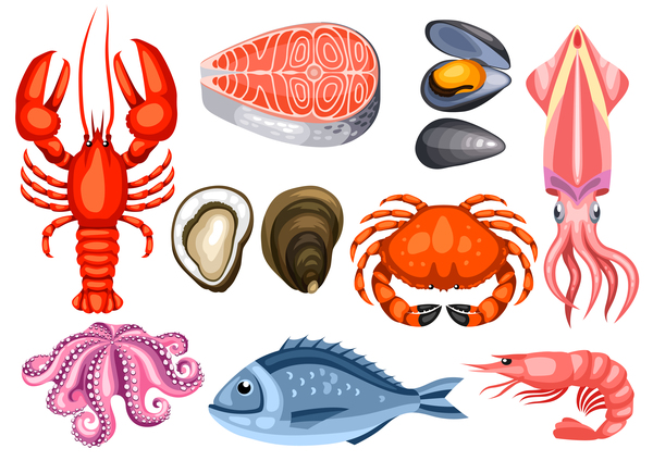 Different seafood illustration vector 02