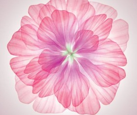 Dream pink flower with vector 03