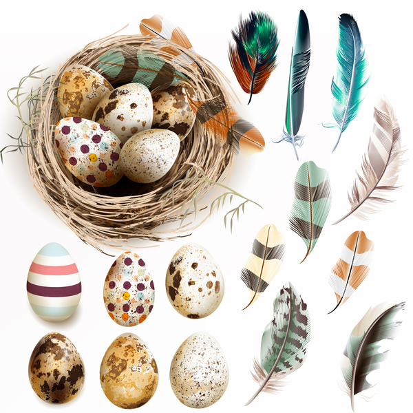 Easter background with bird nest eggs and feathers vector 01
