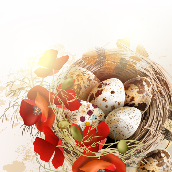 Easter background with bird nest eggs and feathers vector 03