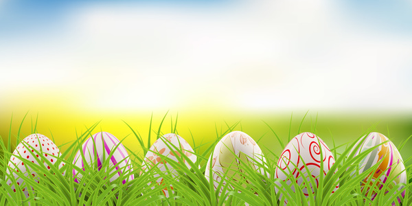 Easter postcard with decorated eggs and green grass vector 03