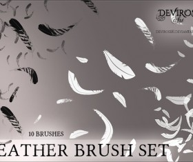 Feather photoshop brushes set