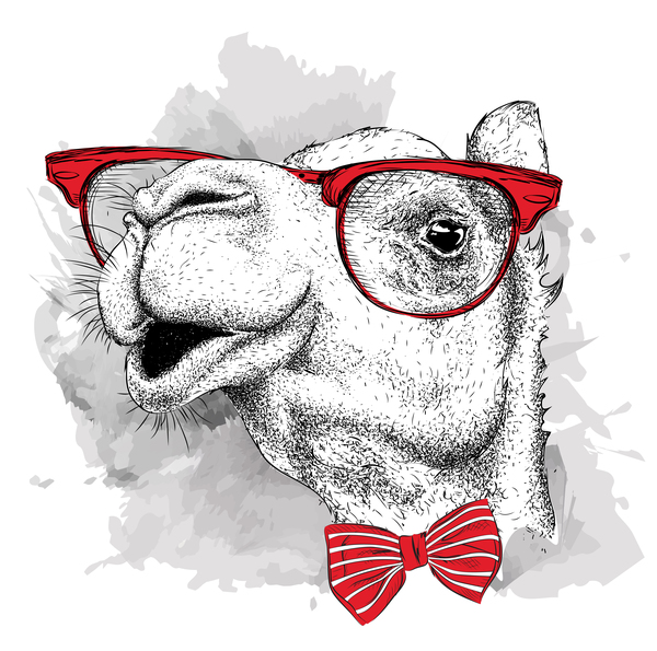 Funny camel and glasses vector material 01