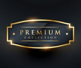 Gold premium labels vector design