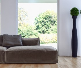 Green plants in the room with sofas HD picture