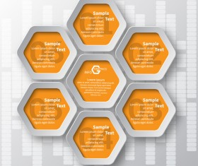 Honeycomb business infographics template vectors set 01