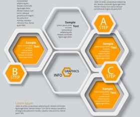 Honeycomb business infographics template vectors set 02
