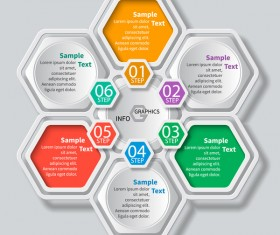 Honeycomb business infographics template vectors set 06