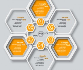 Honeycomb business infographics template vectors set 11