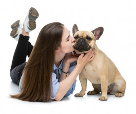 Kiss the French Bulldog woman Stock Photo