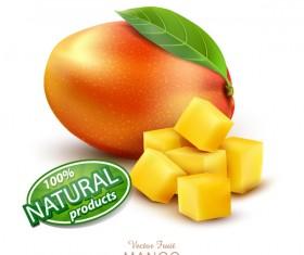 Natural mango poster template vector