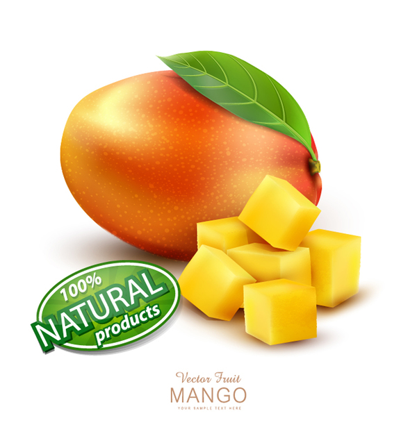 Natural mango poster template vector