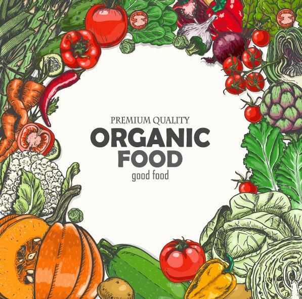 Organic vagetable frame retro vector 01