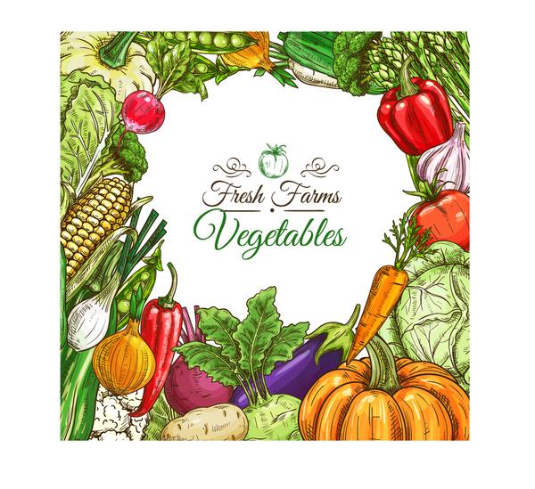 Organic vagetable frame retro vector 02
