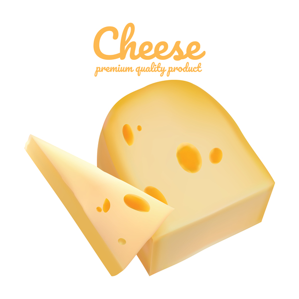 Premium quality cheese realistic vector 02