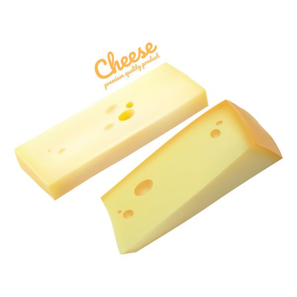 Premium quality cheese realistic vector 03