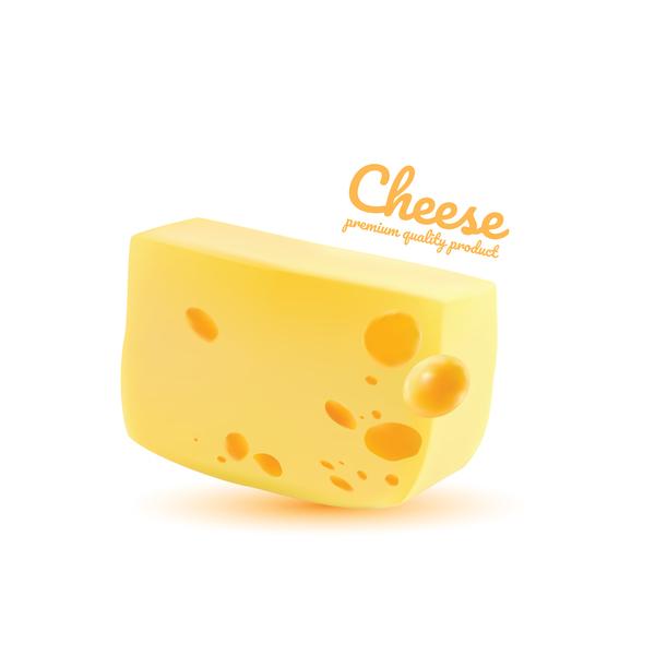 Premium quality cheese realistic vector 04