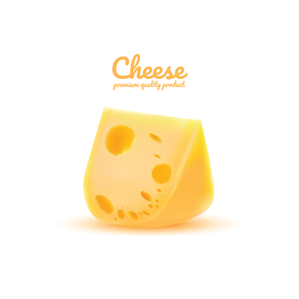 Premium quality cheese realistic vector 05