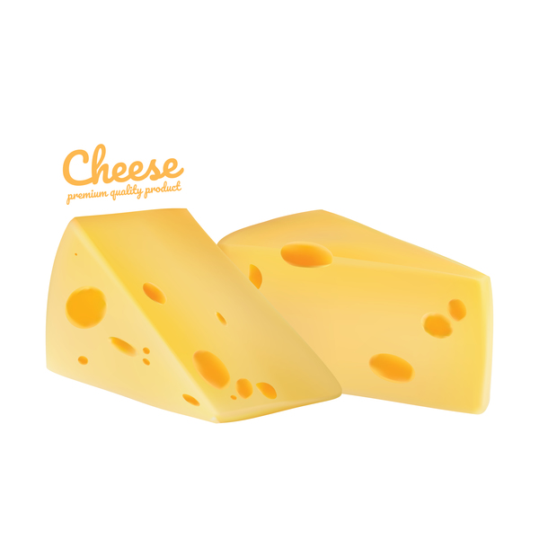 Premium quality cheese realistic vector 06