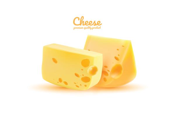 Premium quality cheese realistic vector 07