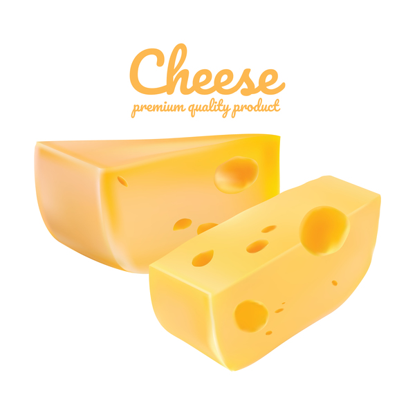 Premium quality cheese realistic vector 10