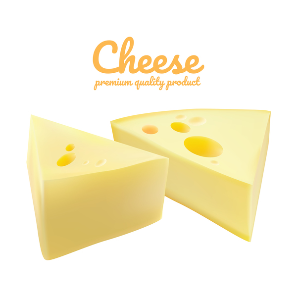 Premium quality cheese realistic vector 11