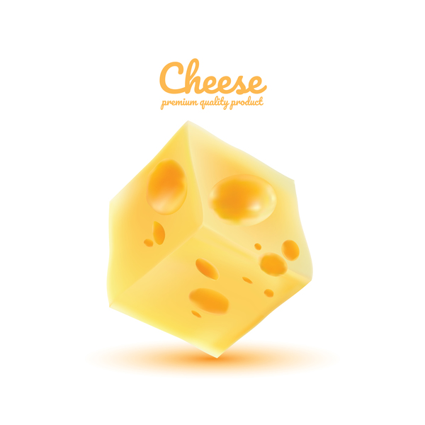 Premium quality cheese realistic vector 12