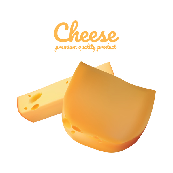 Premium quality cheese realistic vector 13