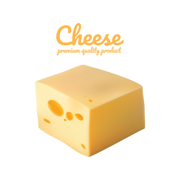 Premium quality cheese realistic vector 14