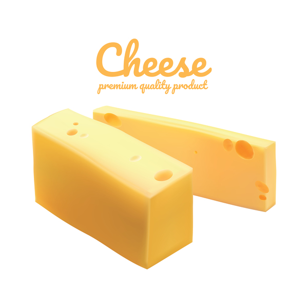 Premium quality cheese realistic vector 15
