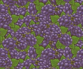 Purple grapes seamless hand drawn vector