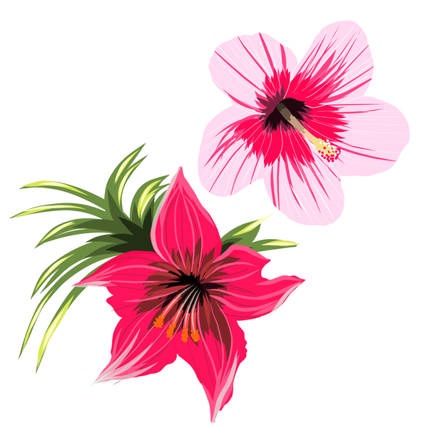 Red with pink tropical flowers vector 01