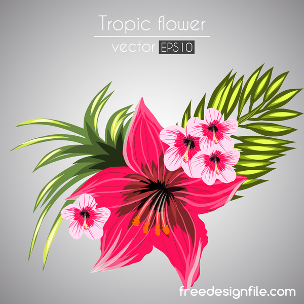 Red with pink tropical flowers vector 05